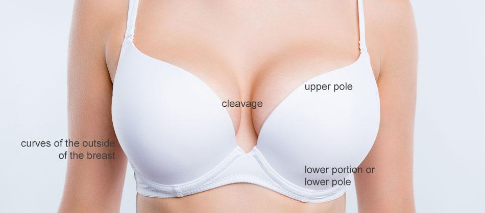 Breast diagram toronto